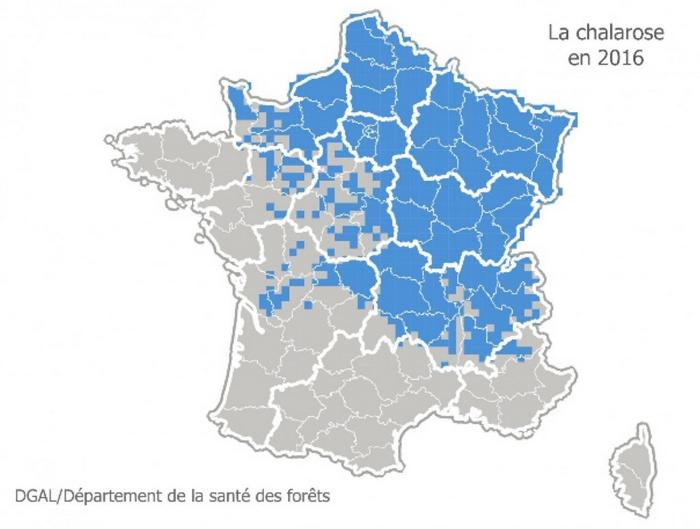 carte-france-chalarose