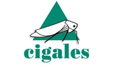 Logo des Cigales