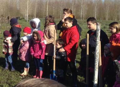Plantation expérimentale dans le Marais poitevin, avec les enfants de l'école publique du Mazeau en Vendée