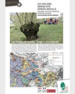 Les Ateliers paysage Grand Site du marais mouillé - Levées de Maillé, Taugon et La Ronde