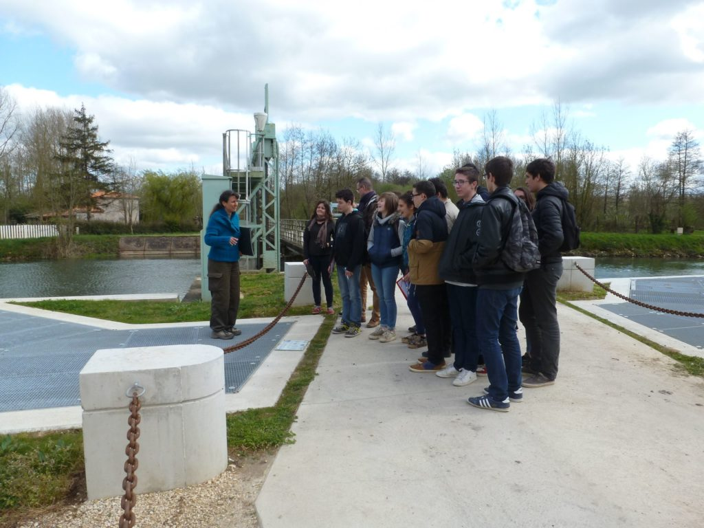 Guides bateliers en formation par le PNR du Marais poitevin