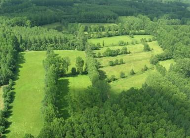 Vue aérienne du paysage du marais mouillé dans le Marais poitevin