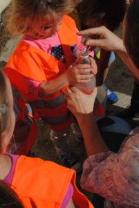 Opération de sensibilitation Fleurissons nos rues avec les enfants des communes du Parc du Marais poitevin