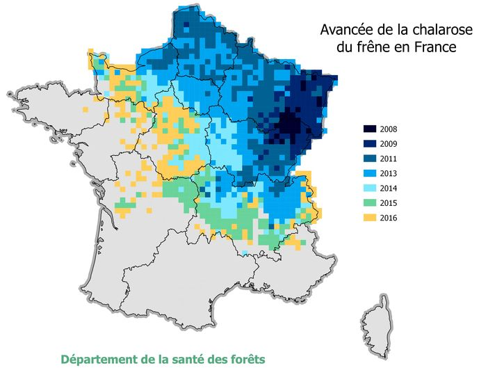 carte- chalarose-france-DSF