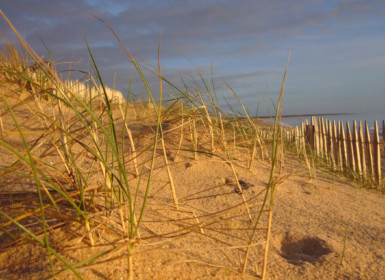 littoral la faute sur mer