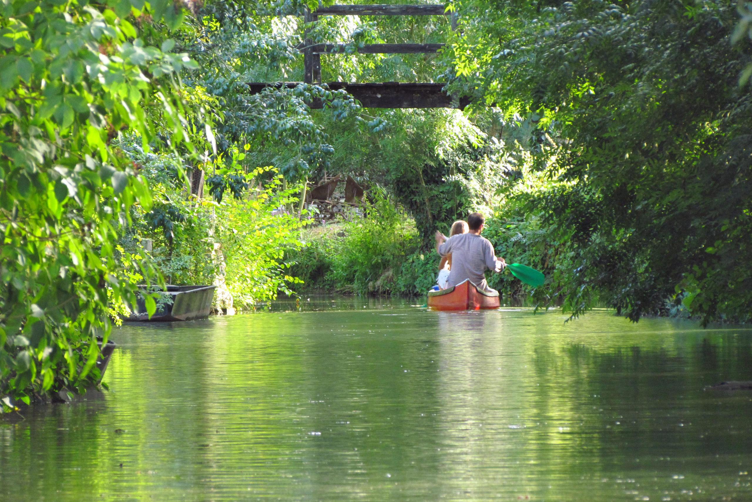Pormenade en canoë dans le Marais poitevin